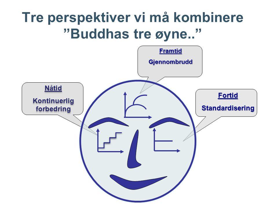 Tre perspektiver vi må kombinere Buddhas tre øyne.. FortidStandardisering Nåtid Kontinuerlig forbedring Nåtid Kontinuerlig forbedring FramtidGjennombrudd