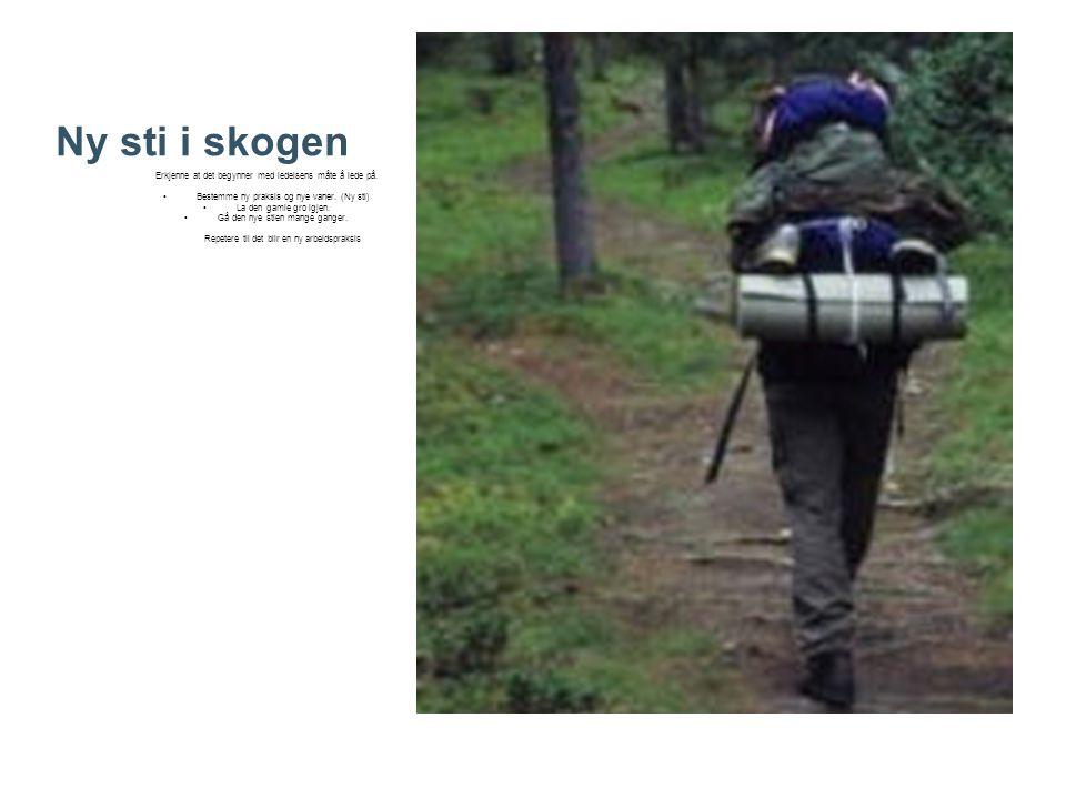 Ny sti i skogen Erkjenne at det begynner med ledelsens måte å lede på.