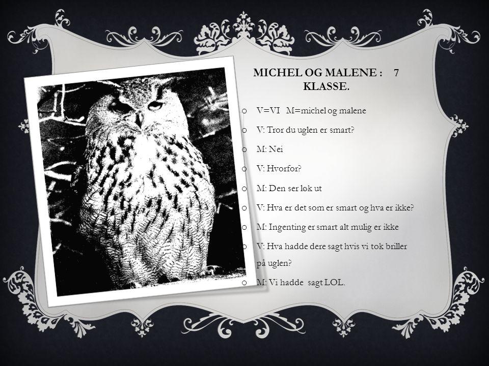 MICHEL OG MALENE : 7 KLASSE. o V=VI M=michel og malene o V: Tror du uglen er smart? o M: Nei o V: Hvorfor? o M: Den ser løk ut o V: Hva er det som er