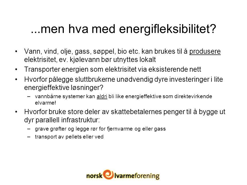 ...men hva med energifleksibilitet. Vann, vind, olje, gass, søppel, bio etc.