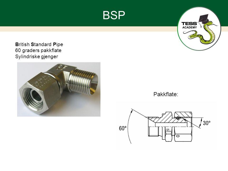 BSP British Standard Pipe 60 graders pakkflate Sylindriske gjenger Pakkflate: