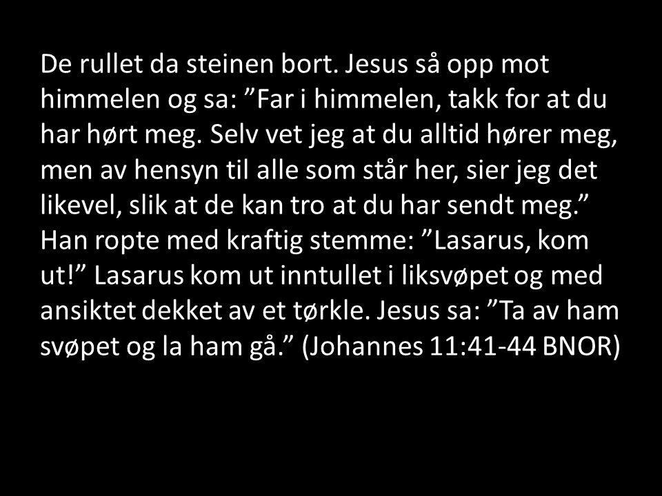 """De rullet da steinen bort. Jesus så opp mot himmelen og sa: """"Far i himmelen, takk for at du har hørt meg. Selv vet jeg at du alltid hører meg, men av"""