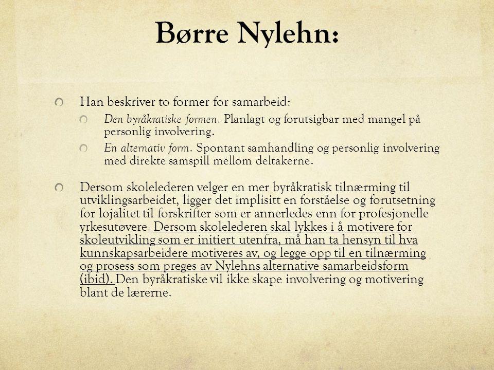 Børre Nylehn: Han beskriver to former for samarbeid: Den byråkratiske formen.