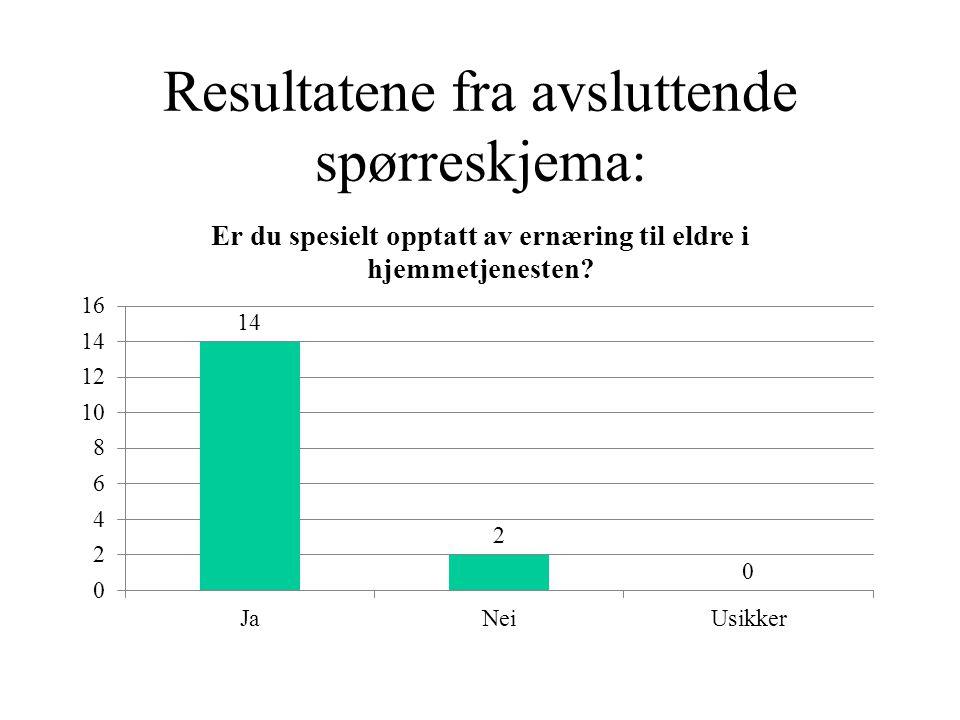 Resultatene fra avsluttende spørreskjema: