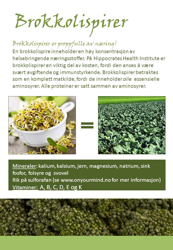 Reddikspirer superspirer.no Reddikspirer er en god kilde til A- og C- vitaminer.