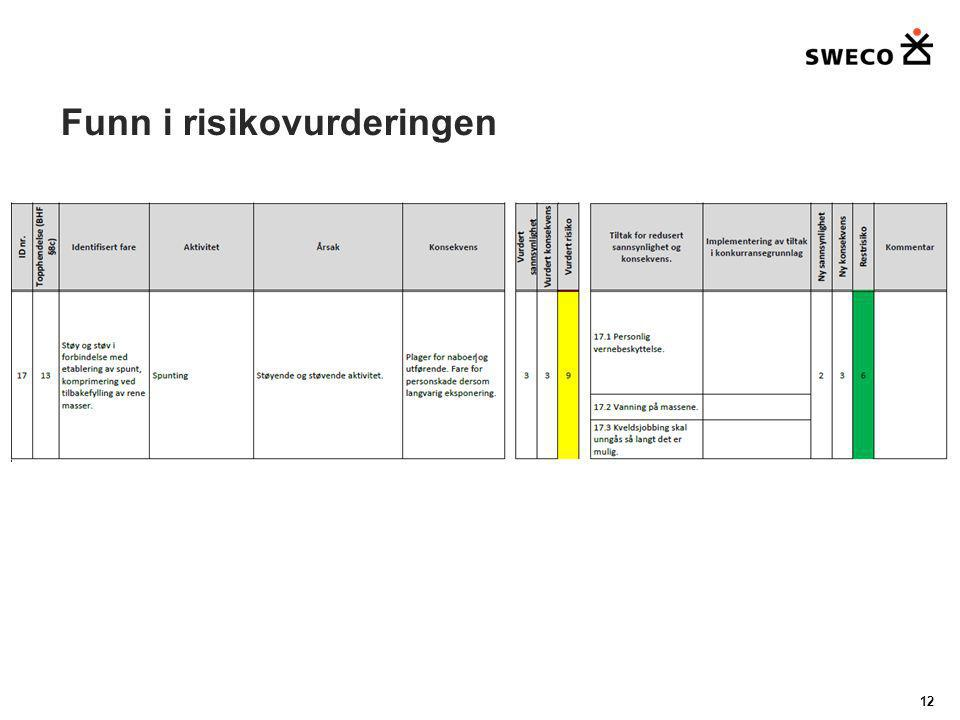 Funn i risikovurderingen 12