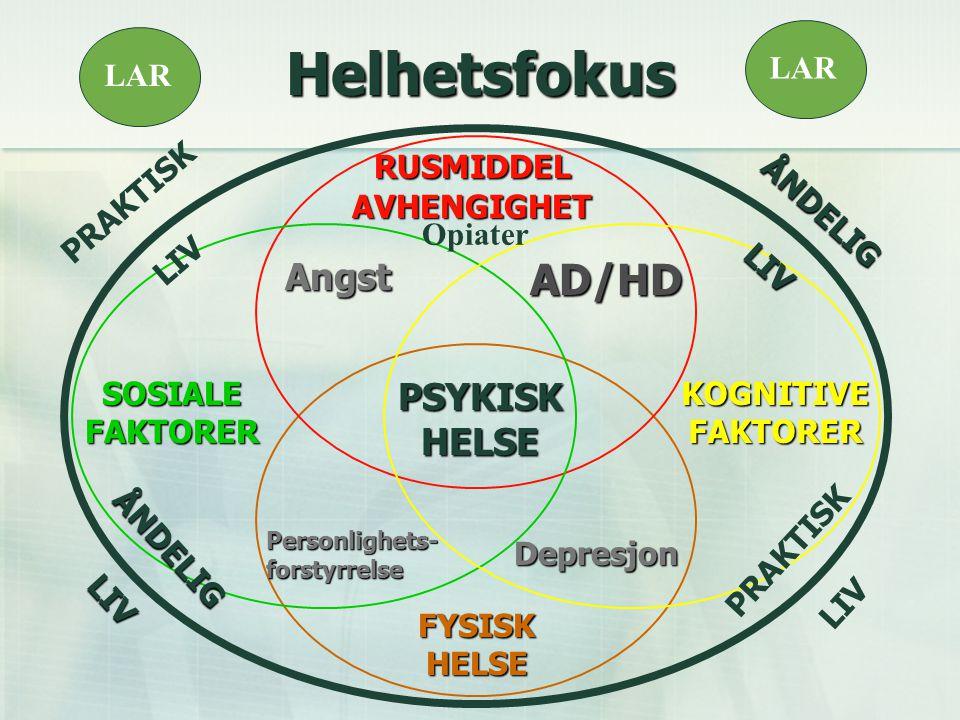 AD/HD Personlighets- forstyrrelse Depresjon Angst Angst PSYKISKHELSE FYSISKHELSE PRAKTISK LIV PRAKTISK LIV ÅNDELIGLIV ÅNDELIGLIV SOSIALEFAKTORERKOGNITIVEFAKTORER RUSMIDDEL AVHENGIGHET Helhetsfokus LAR Opiater