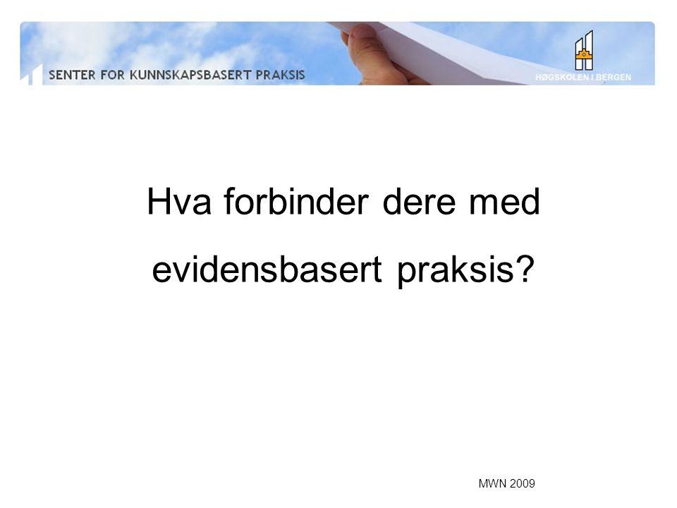 MWN 2009 Innen utdanning –Stipendiat Nina R Olsen fysioterapi bachelor –Videreutdanning i diabetessykepleie –Videreutdanning KBP + KBP for bibliotekarer –Mastergradsutdanningen