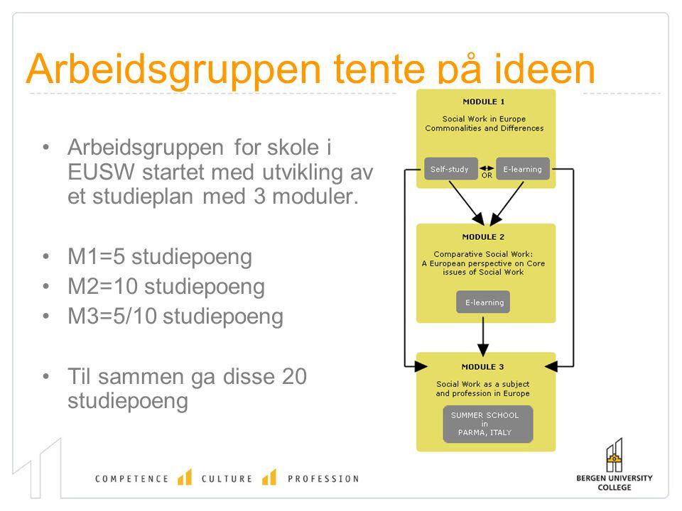 Arbeidsgruppen tente på ideen Arbeidsgruppen for skole i EUSW startet med utvikling av et studieplan med 3 moduler. M1=5 studiepoeng M2=10 studiepoeng