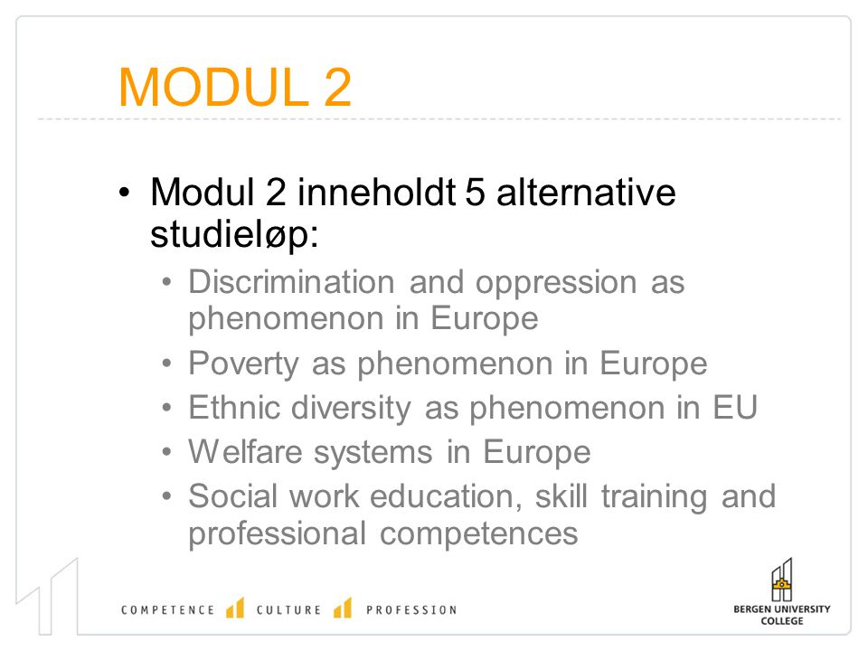 MODUL 2 Modul 2 inneholdt 5 alternative studieløp: Discrimination and oppression as phenomenon in Europe Poverty as phenomenon in Europe Ethnic diversity as phenomenon in EU Welfare systems in Europe Social work education, skill training and professional competences