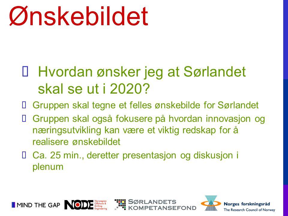  Hvordan ønsker jeg at Sørlandet skal se ut i 2020?  Gruppen skal tegne et felles ønskebilde for Sørlandet  Gruppen skal også fokusere på hvordan i