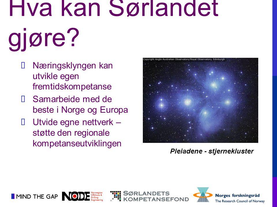  Næringsklyngen kan utvikle egen fremtidskompetanse  Samarbeide med de beste i Norge og Europa  Utvide egne nettverk – støtte den regionale kompeta