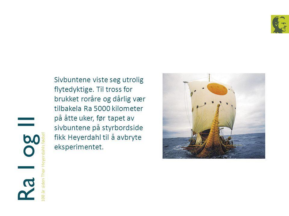 Ra I og II 100 år siden Thor Heyerdahls fødsel Sivbuntene viste seg utrolig flytedyktige. Til tross for brukket roråre og dårlig vær tilbakela Ra 5000