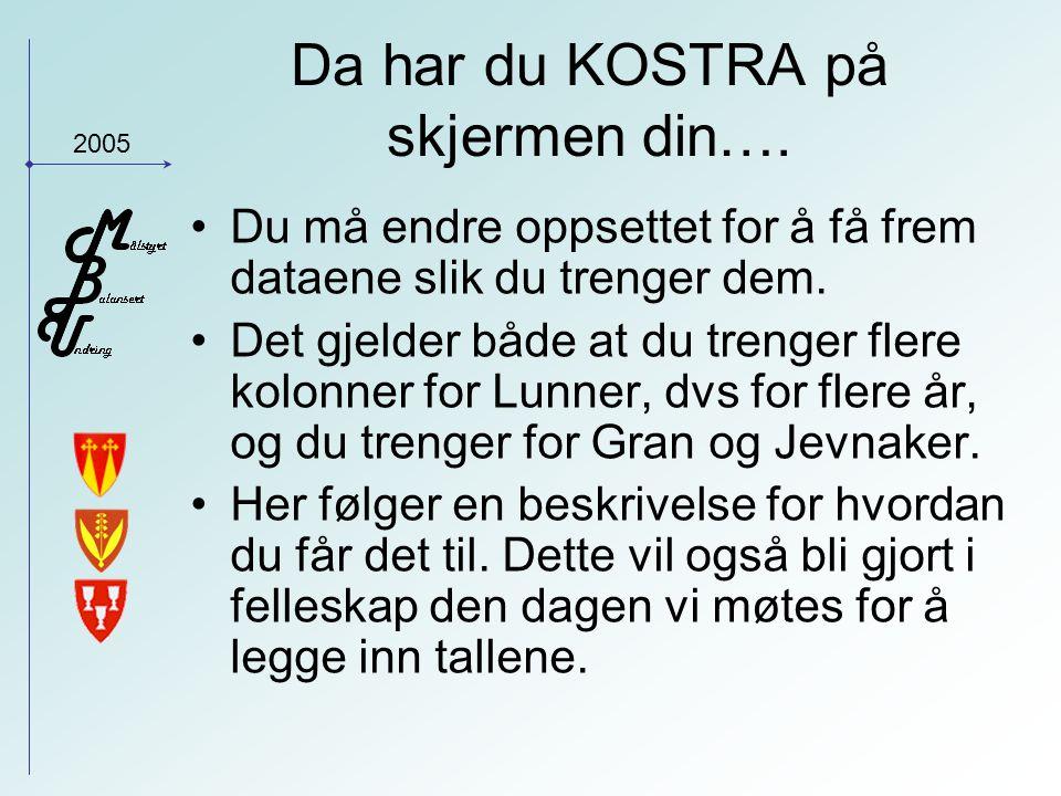 2005 Da har du KOSTRA på skjermen din….