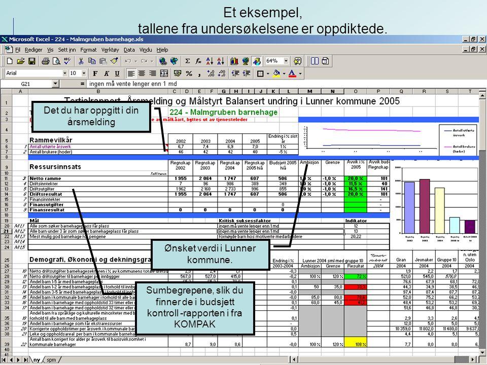 2005 Det du har oppgitt i din årsmelding Sumbegrepene, slik du finner de i budsjett kontroll -rapporten i fra KOMPAK Ønsket verdi i Lunner kommune.