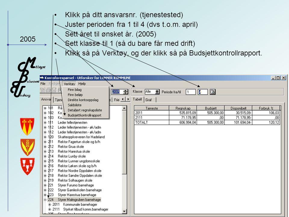 2005 Her finner du tallene du trenger for HIÅ (hittil i år) dvs til tertialrapporten Sum begrepene i målkartet finner du her, for eksempel Nettoresultat, Driftsresultat, Driftsinntekter etc.