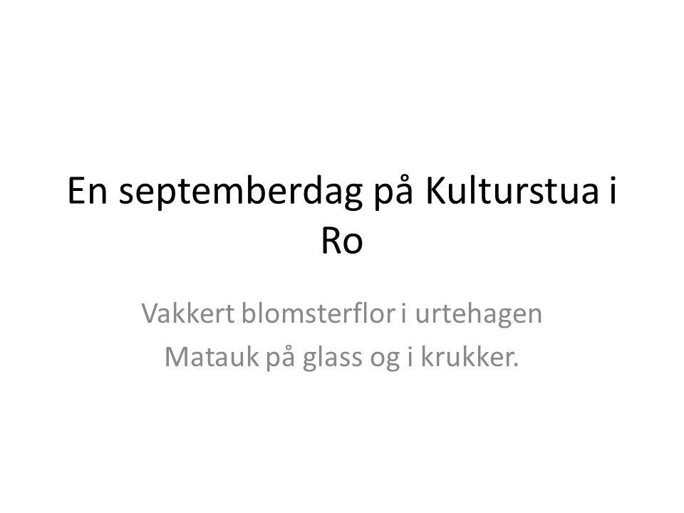 En septemberdag på Kulturstua i Ro Vakkert blomsterflor i urtehagen Matauk på glass og i krukker.