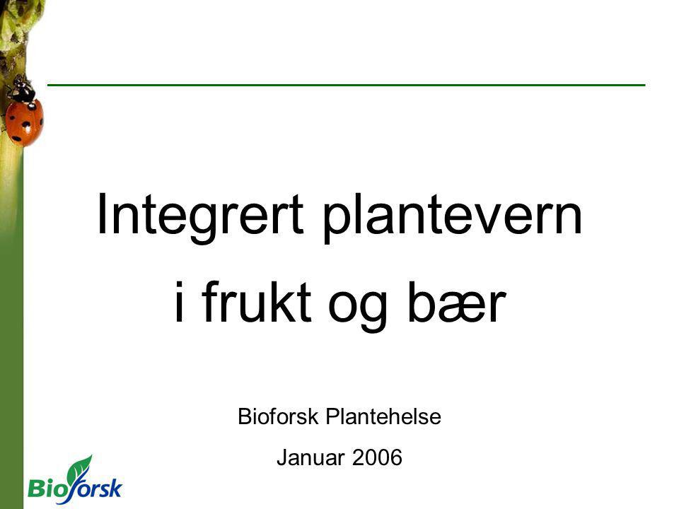 Integrert plantevern i frukt og bær Bioforsk Plantehelse Januar 2006