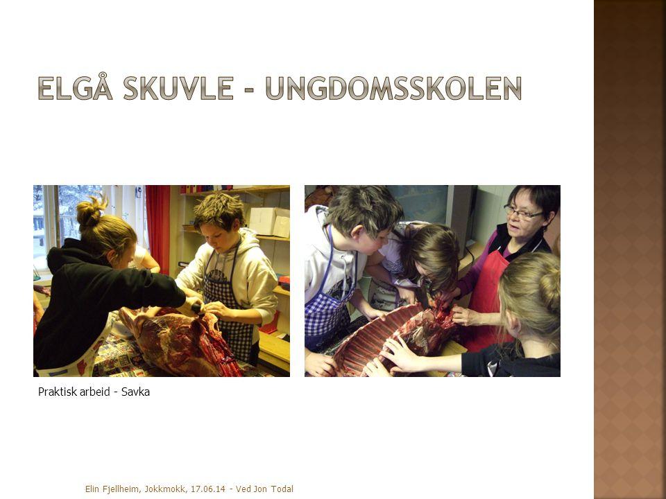 Praktisk arbeid - Savka