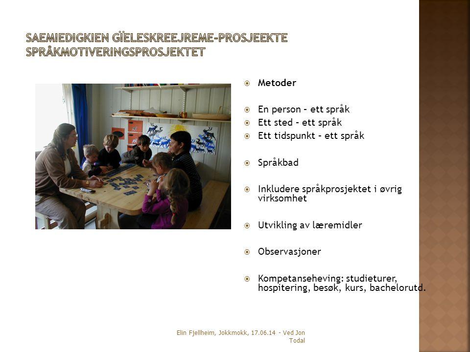  Metoder  En person – ett språk  Ett sted – ett språk  Ett tidspunkt – ett språk  Språkbad  Inkludere språkprosjektet i øvrig virksomhet  Utvik