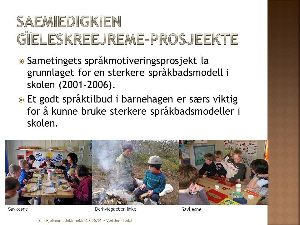  Sametingets språkmotiveringsprosjekt la grunnlaget for en sterkere språkbadsmodell i skolen (2001-2006).  Et godt språktilbud i barnehagen er særs