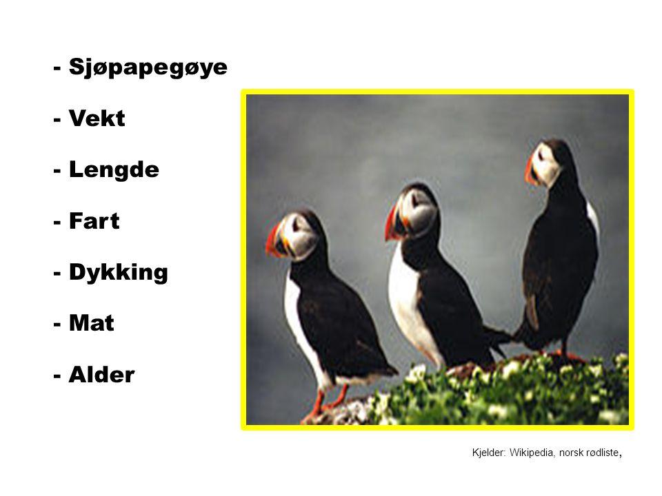- Sjøpapegøye - Vekt - Lengde - Fart - Dykking - Mat - Alder Kjelder: Wikipedia, norsk rødliste,