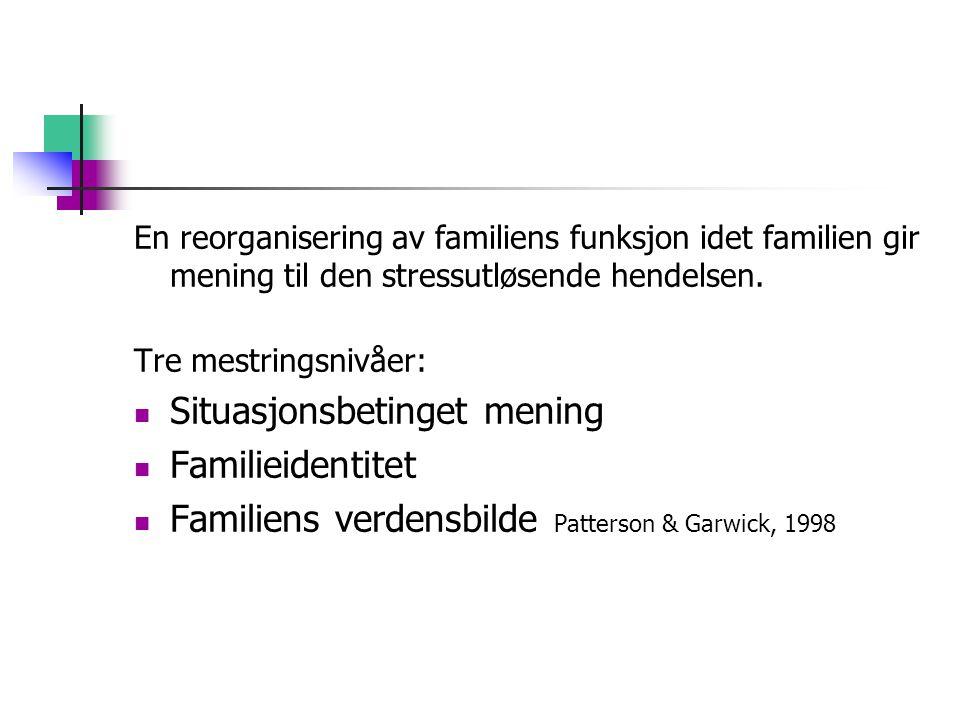 En reorganisering av familiens funksjon idet familien gir mening til den stressutløsende hendelsen. Tre mestringsnivåer: Situasjonsbetinget mening Fam