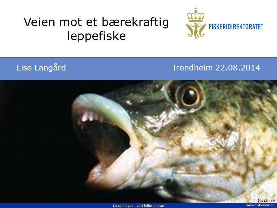 Livet i havet – vårt felles ansvar www.fiskeridir.no Veien mot et bærekraftig leppefiske Lise LangårdTrondheim 22.08.2014 Bilde:imr.no
