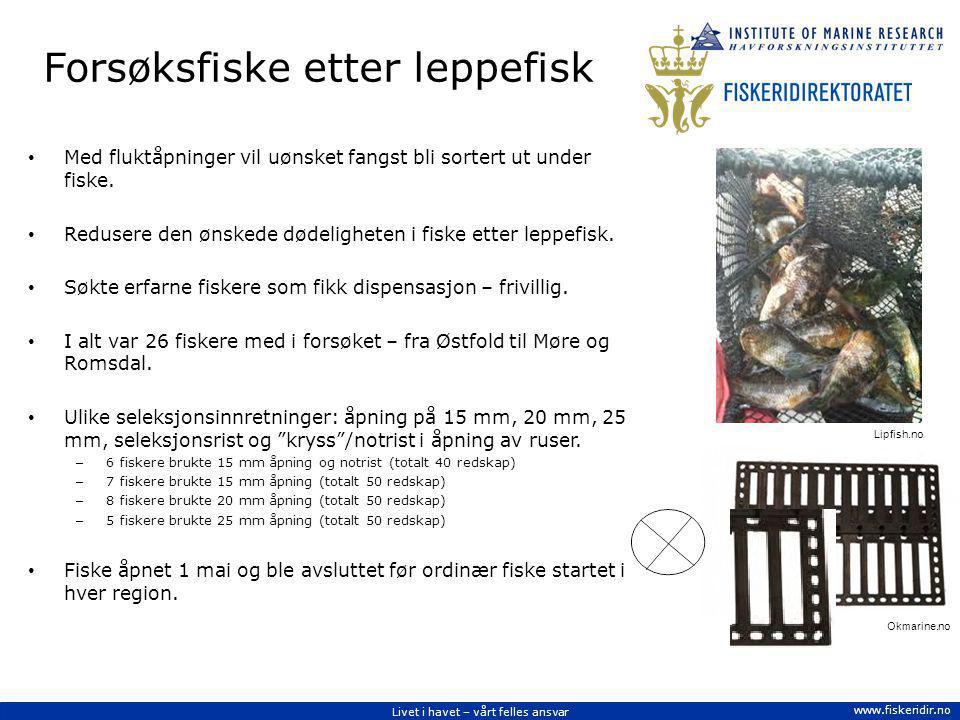 Livet i havet – vårt felles ansvar www.fiskeridir.no Seleksjonsinnretninger Målet er å benytte seleksjonsinnretninger som sikrer et målrettet fiske etter den leppefisken som skal leveres til omsetning, en innretning som selekterer ut fangst av leppefisk under minstemål og fangst av andre arter.