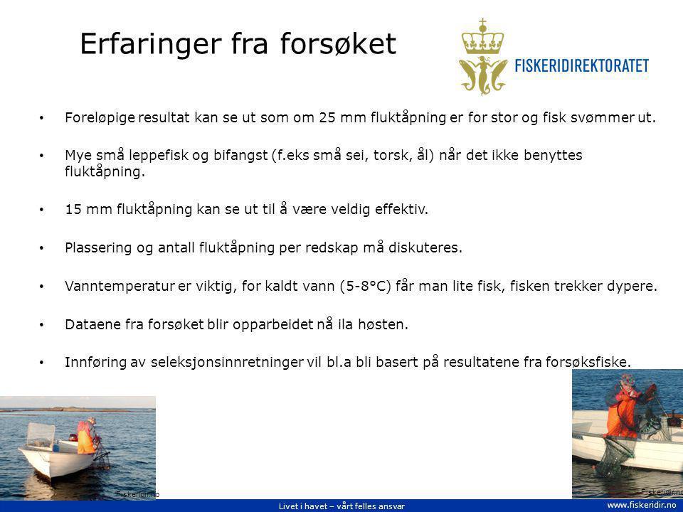 Livet i havet – vårt felles ansvar www.fiskeridir.no Erfaringer fra forsøket Foreløpige resultat kan se ut som om 25 mm fluktåpning er for stor og fis