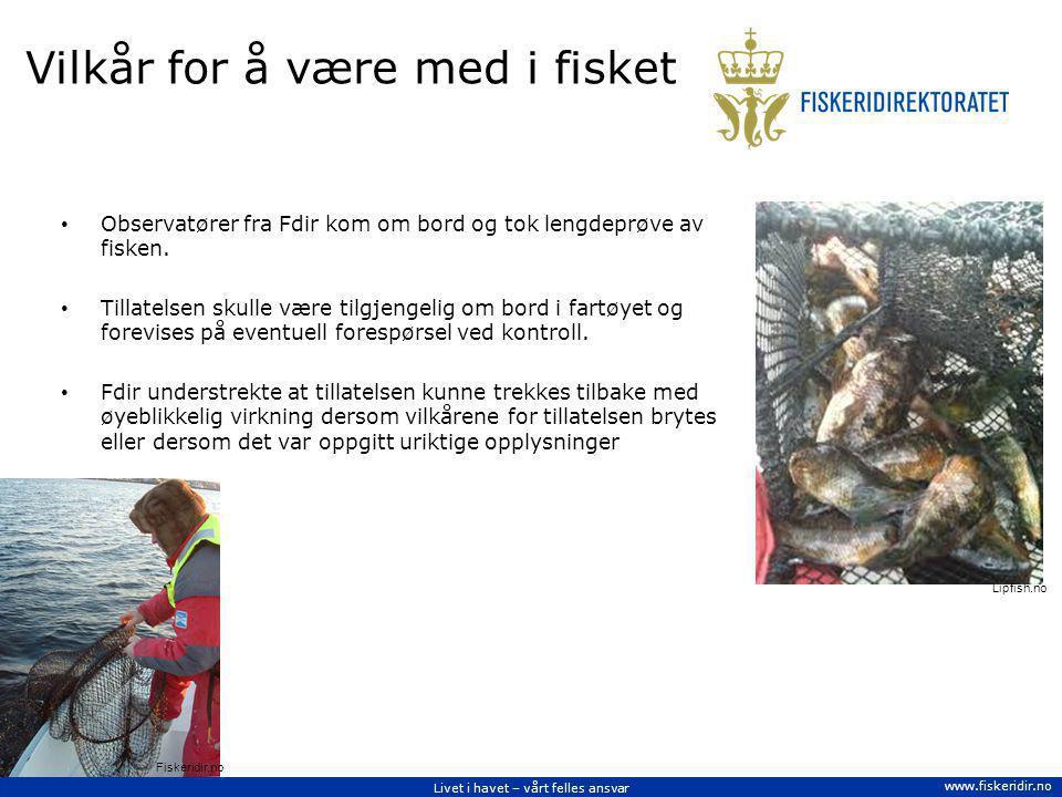 Livet i havet – vårt felles ansvar www.fiskeridir.no Vilkår for å være med i fisket Observatører fra Fdir kom om bord og tok lengdeprøve av fisken. Ti