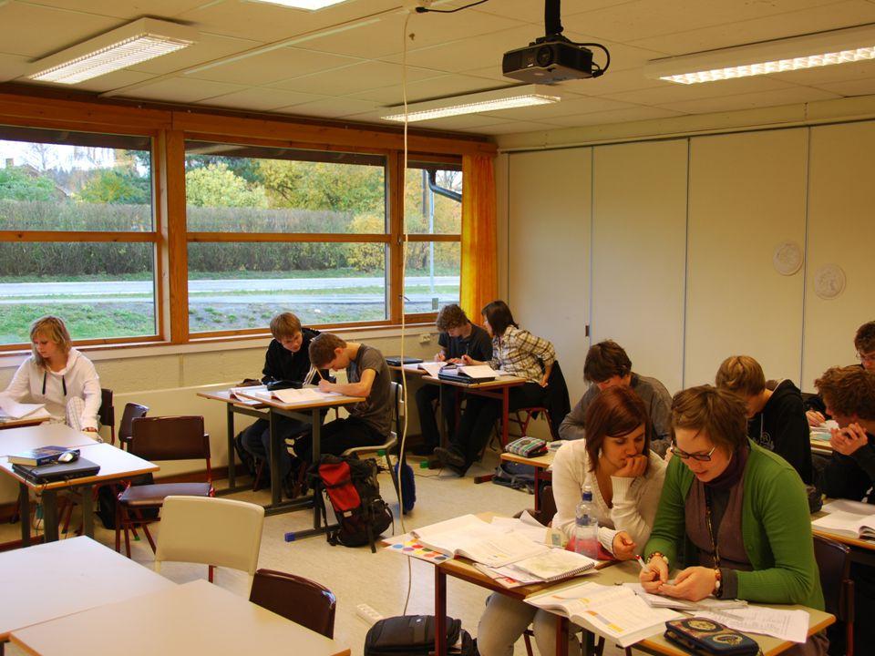 Hos oss er de dyktige elevene ressurspersoner i det normale skolemiljøet