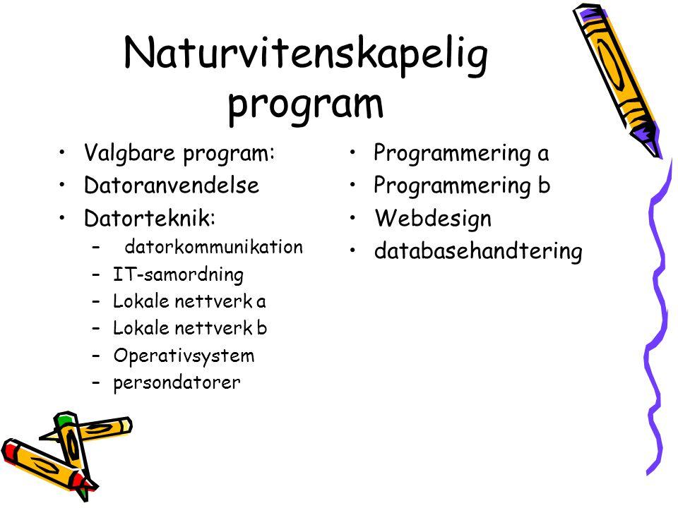 Naturvitenskapelig program Valgbare program: Datoranvendelse Datorteknik: – datorkommunikation –IT-samordning –Lokale nettverk a –Lokale nettverk b –Operativsystem –persondatorer Programmering a Programmering b Webdesign databasehandtering