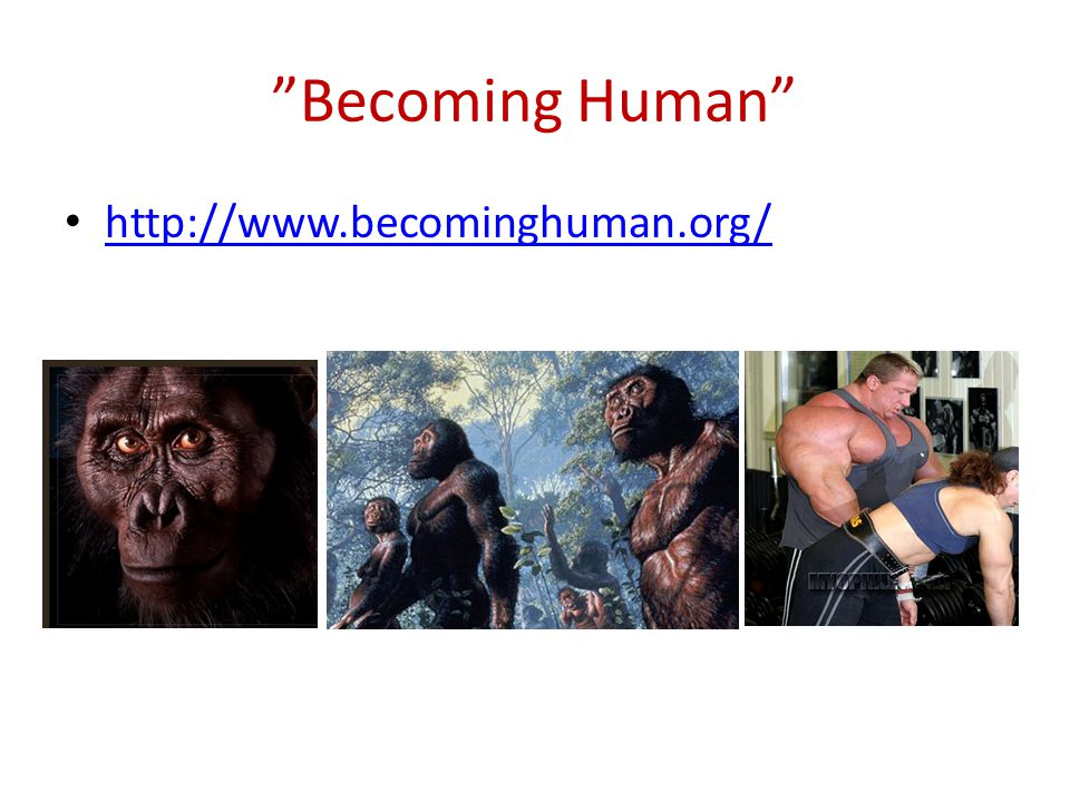 """Becoming Human"" http://www.becominghuman.org/"