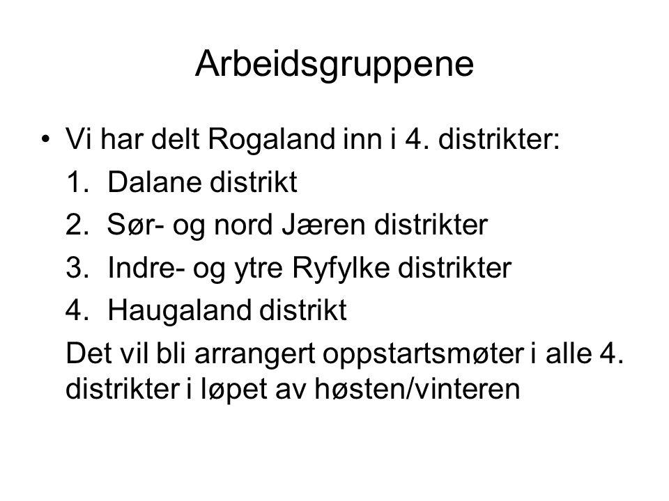 Arbeidsgruppene Vi har delt Rogaland inn i 4. distrikter: 1.Dalane distrikt 2. Sør- og nord Jæren distrikter 3. Indre- og ytre Ryfylke distrikter 4.Ha
