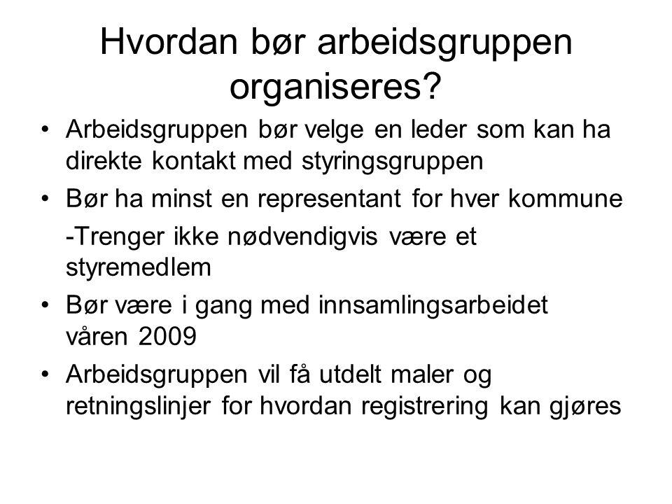 Hvordan bør arbeidsgruppen organiseres.