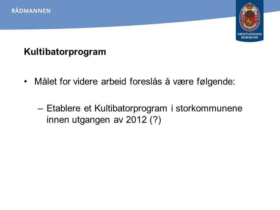 Kultibatorprogram Målet for videre arbeid foreslås å være følgende: –Etablere et Kultibatorprogram i storkommunene innen utgangen av 2012 (?)