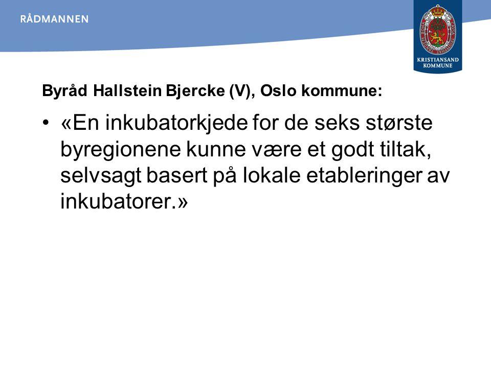 Byråd Hallstein Bjercke (V), Oslo kommune: «En inkubatorkjede for de seks største byregionene kunne være et godt tiltak, selvsagt basert på lokale eta