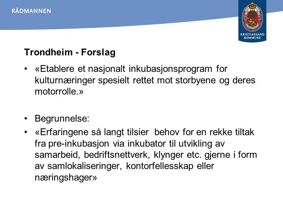 Trondheim - Forslag «Etablere et nasjonalt inkubasjonsprogram for kulturnæringer spesielt rettet mot storbyene og deres motorrolle.» Begrunnelse: «Erf