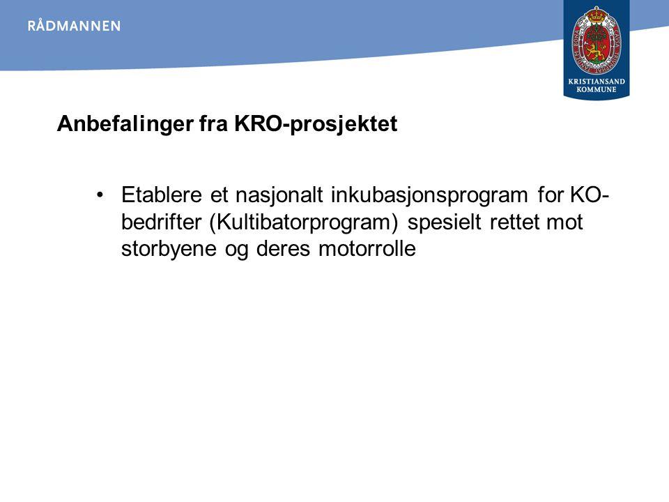 Anbefalinger fra KRO-prosjektet Etablere et nasjonalt inkubasjonsprogram for KO- bedrifter (Kultibatorprogram) spesielt rettet mot storbyene og deres