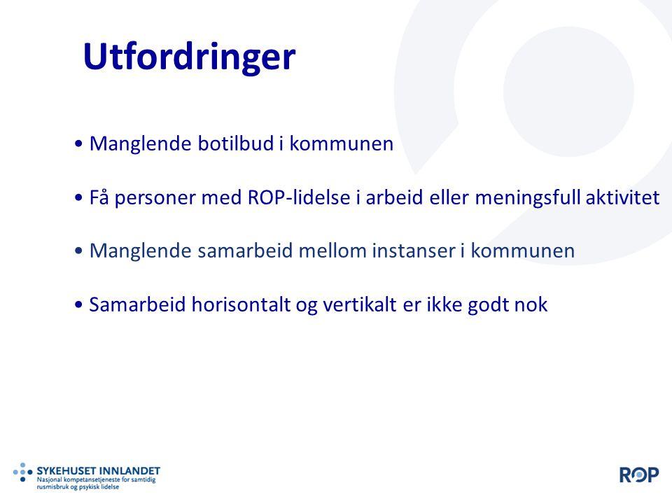 Utfordringer Manglende botilbud i kommunen Få personer med ROP-lidelse i arbeid eller meningsfull aktivitet Manglende samarbeid mellom instanser i kom
