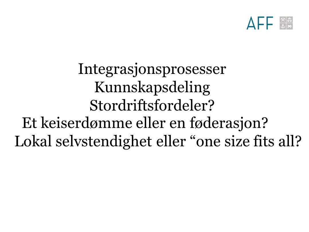 Integrasjonsprosesser Kunnskapsdeling Stordriftsfordeler.
