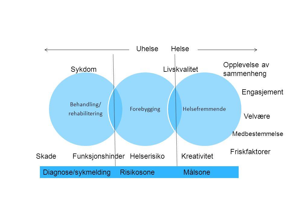Uhelse Helse Sykdom Livskvalitet Skade Funksjonshinder Helserisiko Kreativitet Opplevelse av sammenheng Engasjement Medbestemmelse Velvære Friskfaktor
