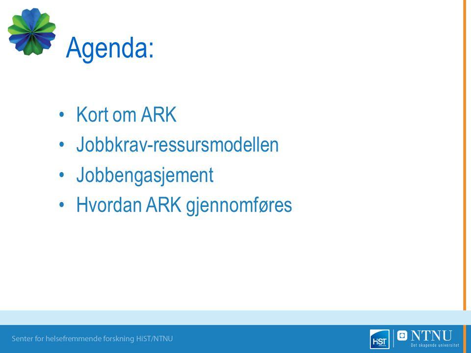 Agenda: Kort om ARK Jobbkrav-ressursmodellen Jobbengasjement Hvordan ARK gjennomføres