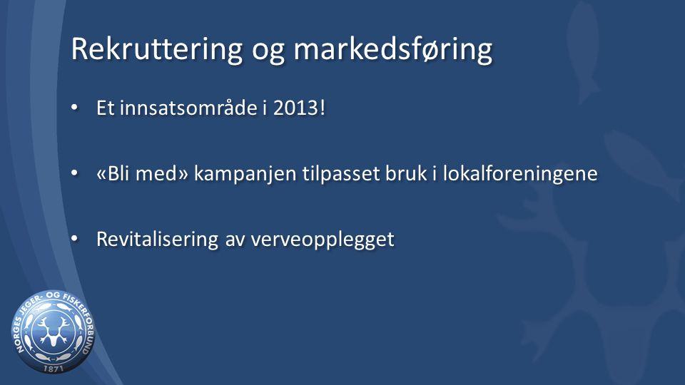 Rekruttering og markedsføring Et innsatsområde i 2013.