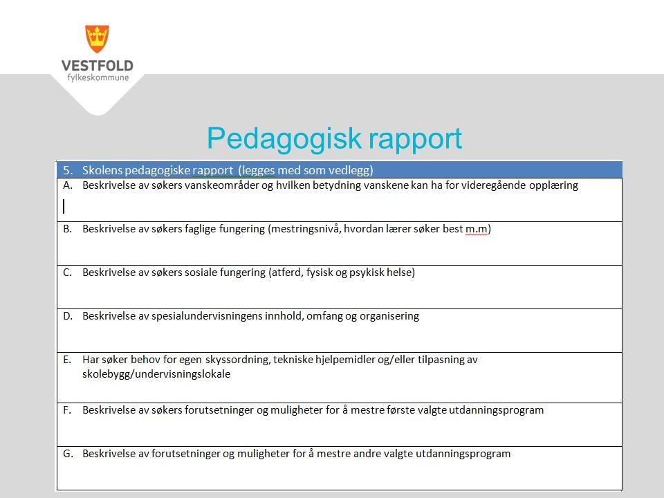 Pedagogisk rapport