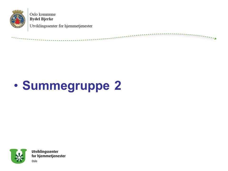 Summegruppe 2