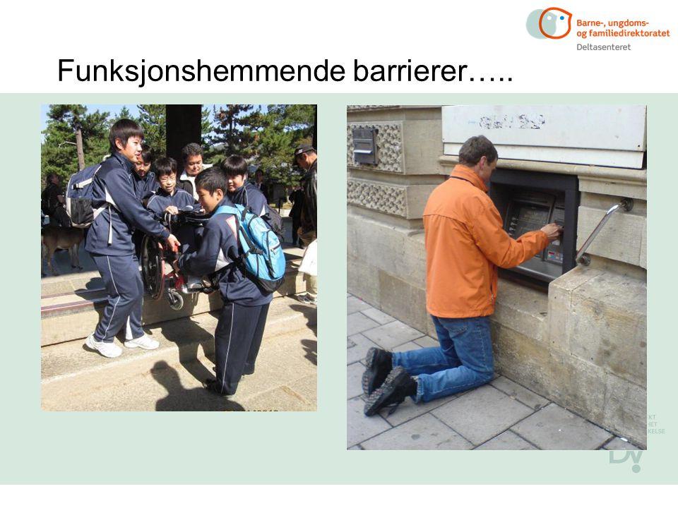 Funksjonshemmende barrierer…..