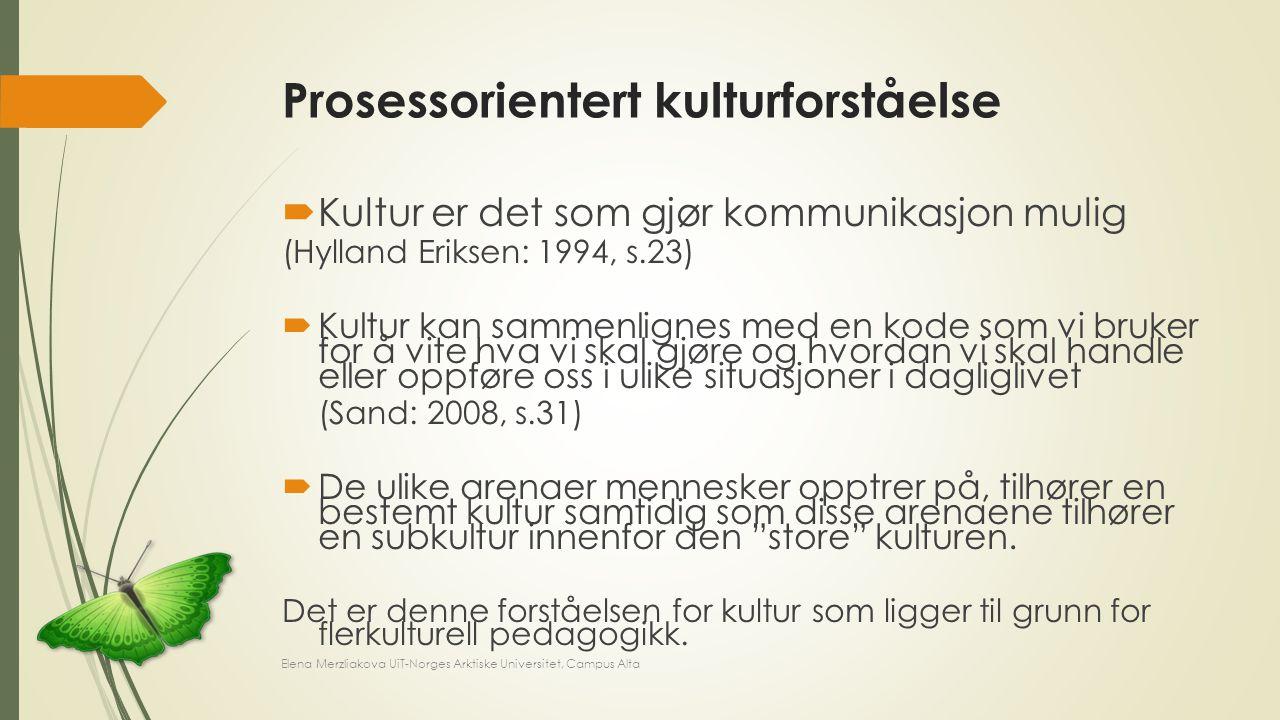 Prosessorientert kulturforståelse  Kultur er det som gjør kommunikasjon mulig (Hylland Eriksen: 1994, s.23)  Kultur kan sammenlignes med en kode som