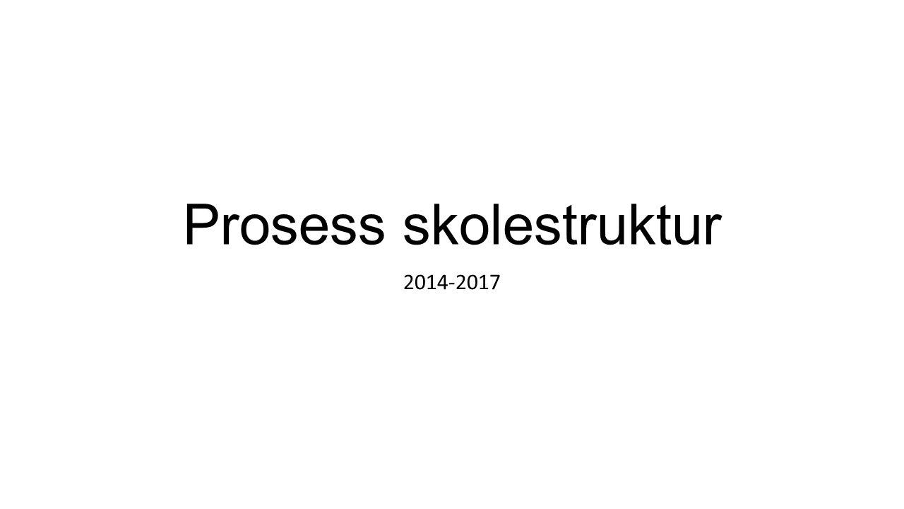 Prosess skolestruktur 2014-2017